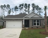 145 Laurel Hill Place, Murrells Inlet image