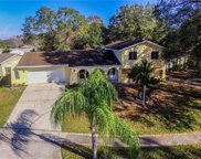 4227 Autumn Leaves Drive, Tampa image