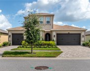 13224 Fawn Lily Drive, Riverview image