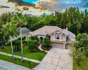 12103 Marblehead Drive, Tampa image
