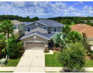 8115 Savannah Point Court, Tampa image