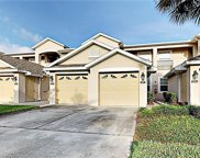 9422 Myrtle Creek Lane Unit 805, Orlando image