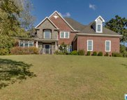 240 Cahaba Oaks Trl, Indian Springs Village image