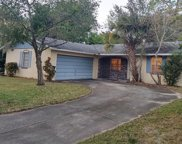 7165 Green Needle Drive, Winter Park image