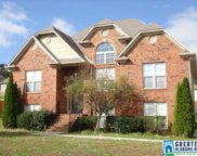 210 Hathaway Ln, Odenville image