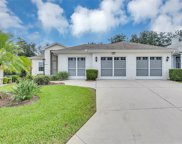 5097 Indian Ocean Loop, Tavares image