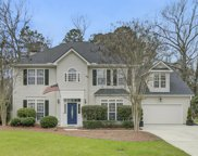 1144 Black Rush Circle, Mount Pleasant image