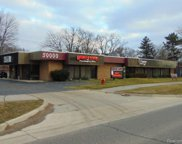 30000 ORCHARD LAKE, Farmington Hills image