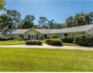 159 Annwood Road, Palm Harbor image