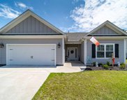 45 Hagley Retreat Dr., Pawleys Island image