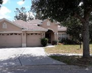 12922 Flamingo Parkway, Spring Hill image
