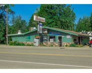 18377 STATE HIGHWAY 42, Camas Valley image
