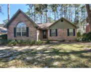 13017 Gopher Wood, Tallahassee image