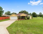 20305 Sw 83rd Place, Dunnellon image