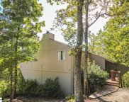 12 Altamont Forest Drive, Greenville image