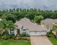 18118 Royal Forest Drive, Tampa image