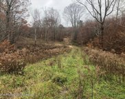 Lot  10 St Marys Villa Rd, Roaring Brook Twp image