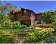 15915 Dover Cliffe Drive, Lutz image