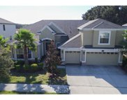 10533 Mistflower Lane, Tampa image