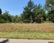 Tract 2 Moser Ln, Whitehouse image