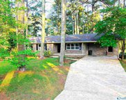 425 Campground Circle, Scottsboro image