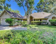40 Cottonwood Lane, Hilton Head Island image