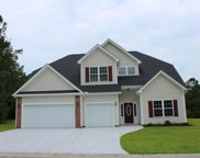 TBB6 Barons Bluff Dr., Conway image