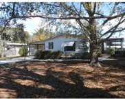 13218 Plum Lake Circle, Minneola image