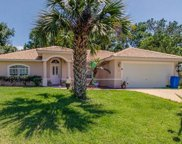 46 Royal Oak Drive, Palm Coast image