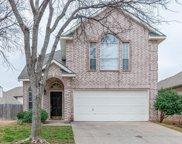 11709 Latania Lane, Fort Worth image