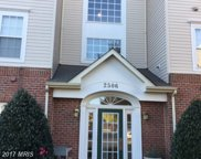 2506 AMBER ORCHARD COURT W Unit #302, Odenton image