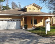 9051 Paolos Place, Kissimmee image