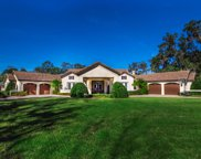 111 STRONG BRANCH DR, Ponte Vedra Beach image