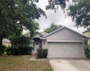 19140 Dove Creek Drive, Tampa image