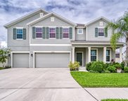 11605 Tetrafin Drive, Riverview image