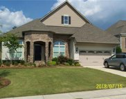 15006  High Bluff Court, Charlotte image