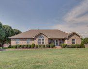 1213 Hunters Point Ln, Spring Hill image