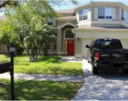 18130 Sandy Pointe Drive, Tampa image