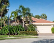 2443 Butterfly Palm Dr, Naples image