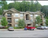 1130 Tree Top Way Unit 1314, Knoxville image