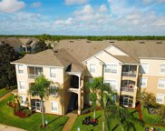 2300 Butterfly Palm Way Unit 305, Kissimmee image