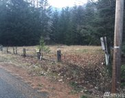 178 Timberline Dr, Packwood image