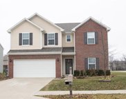 13807 Boulder Canyon  Drive, Fishers image