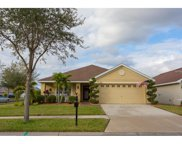 11102 Irish Moss Avenue, Riverview image