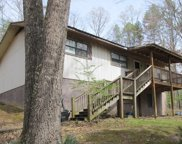 1142 Dickey Creek Road, Other image