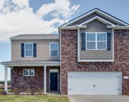 1418 Marigold Drive 434, Spring Hill image