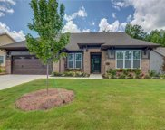 3027  Carriage Oak Way, Fort Mill image