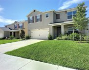16168 Yelloweyed Dr, Clermont image