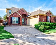 8617 Laughing Waters, McKinney image
