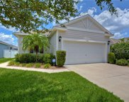 11551 Balintore Drive, Riverview image